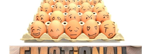 «Les émotions, ces copines messagères»